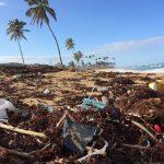 Sve opasnosti mikroplastike i što učiniti protiv nje?