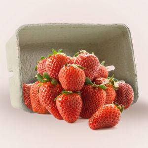 Papirnata posudica za voće i povrće 250g, 1080kom