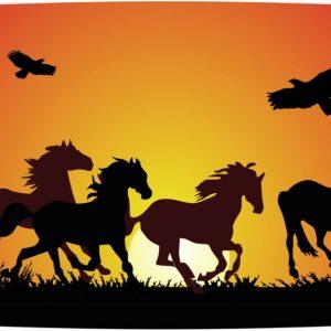 Kutija za užinu od bioplastike – Konji