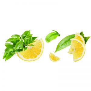 Faith in Nature balzam za kosu čajevac i limun 400ml